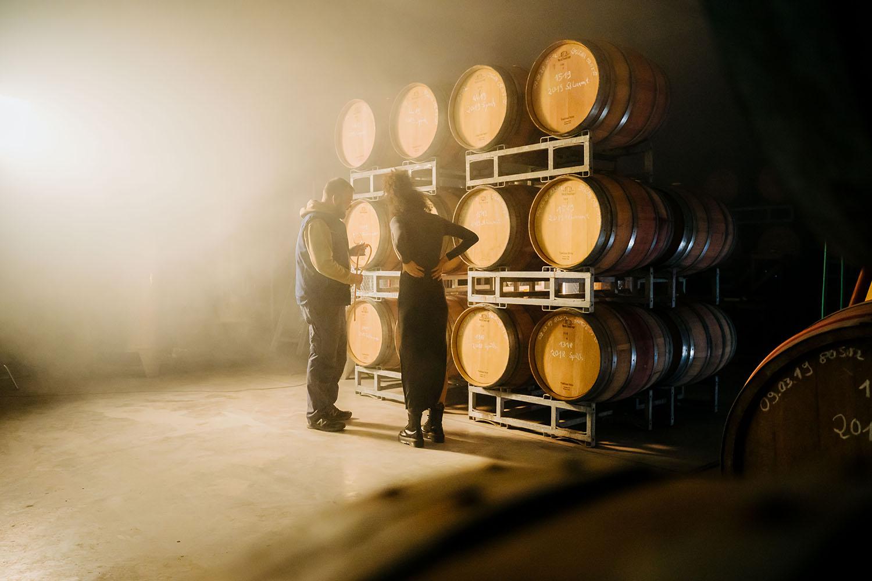 Vinogradarstvo u Njemačkoj: Tradicionalno i nekonvencionalno